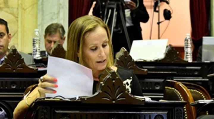 Mayda Cresto llevó el reclamo de una tarifa eléctrica diferenciada al Congreso Nacional