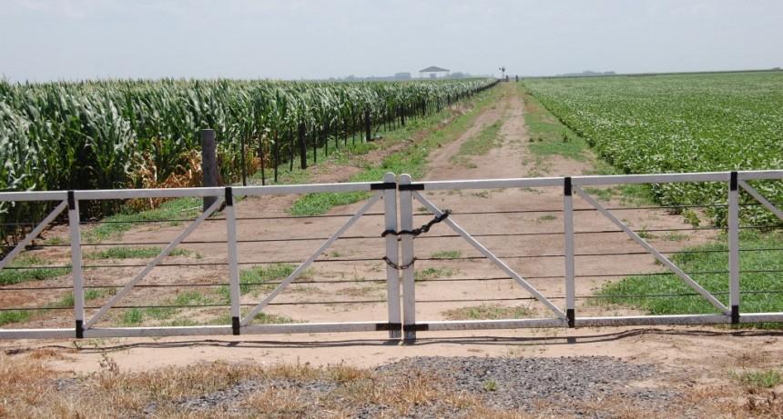 Nuevas herramientas para la protección de cultivos