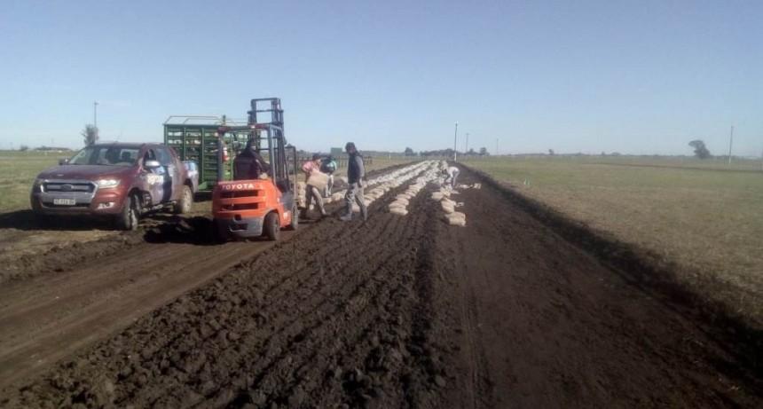 AGROVIAL EL NUEVO PRODUCTO PARA LA ESTABILIZACIÓN DE CAMINOS RURALES SE LANZARÁ EN AGROACTIVA