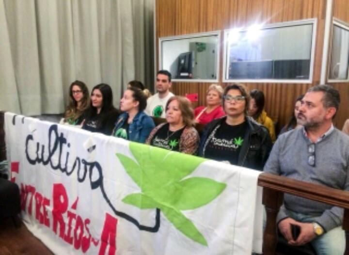 Sanción definitiva para el proyecto sobre uso medicinal de Cannabis